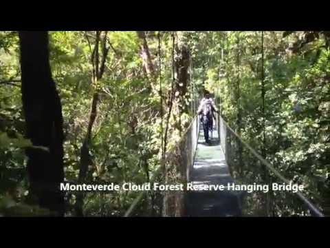Monteverde Cloud Forest Reserve Tours Costa Rica | Jaco Beach Monte Verde Tour