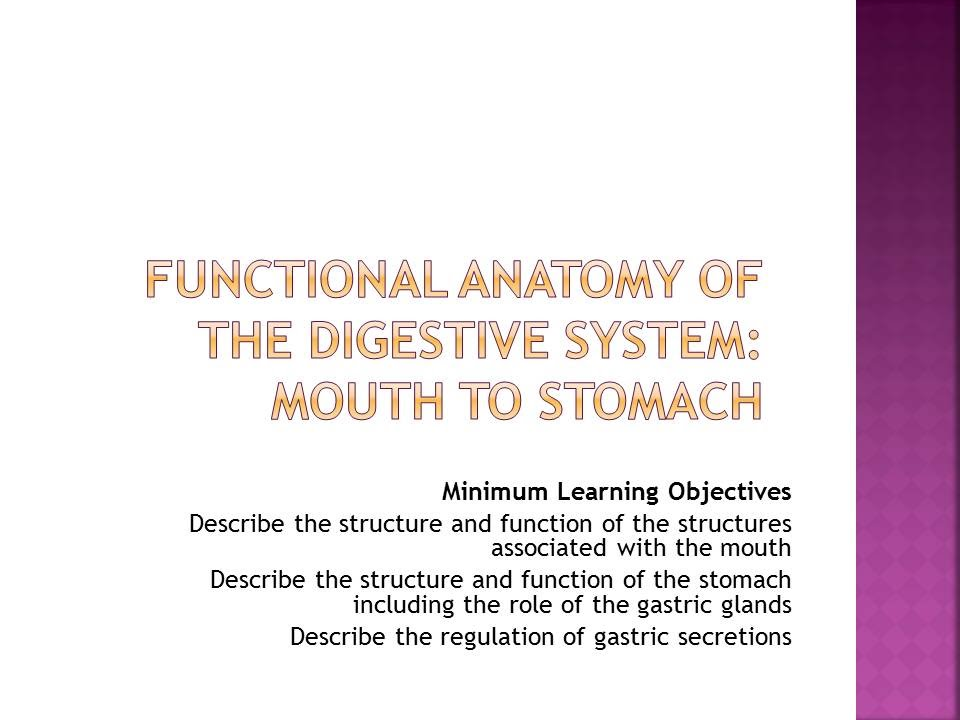 Functional Anatomy Of The Digestive System Mouth To Stomach Youtube