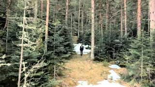 zdravko-colic-pamuk-official-video-hd