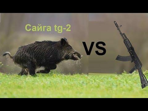 Охота на кабана с сайги ТГ-2 366ТКМ часть 2
