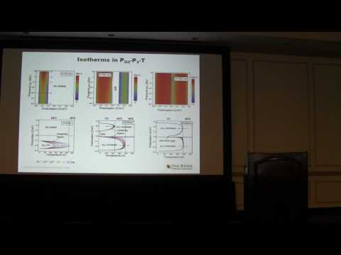 "Ye Cao, ""Emergence of coupled surface electrochemistry-bulk ferroelectricity state on the nanoscale"""