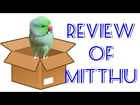 Talking parrot unboxing||review|| Don't laugh Ni to kaat dega👉😂😂👍👍