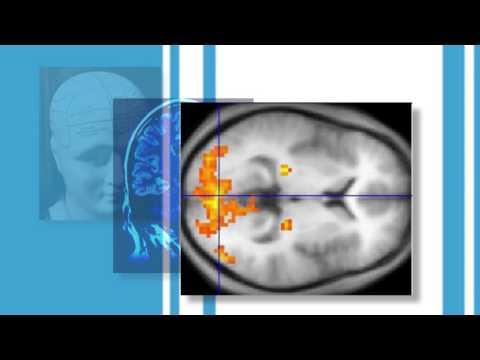 Your Brain on Language: Is grammar inside my head? -- Linguistics & Logic 101