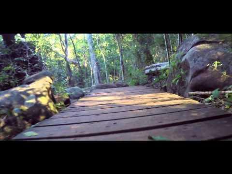 Newlands Forrest (GoPro 4 Silver)