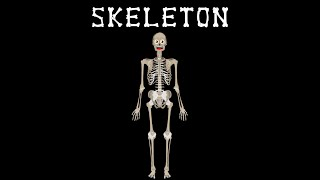 Human Body for Kids/Skeletal System Song/Human Body Systems