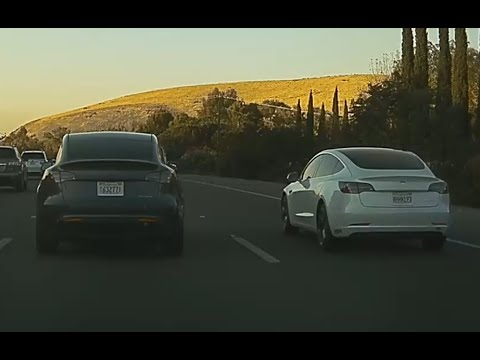 Tesla Model Y spotted driving side by side with Model 3, other cars in best size comparison yet