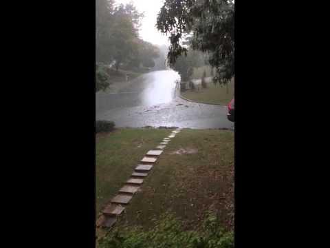 Shadow Pine Flooding