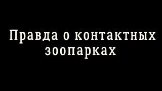 Правда о контактных зоопарках(Фото и видео сделаны в контактных зоопарках Санкт-Петербурга и ЛО Подписать петицию: https://www.change.org/p/запрети..., 2016-07-12T21:49:46.000Z)