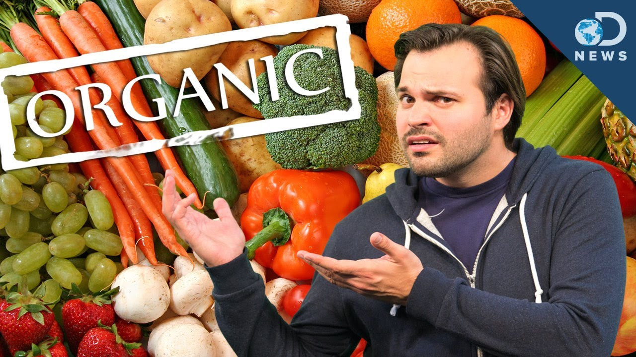 is organic food good for you essay Why do you care about eating organic foods download first-person essays, features, interviews and q&as about life today عربي (arabi) australia.