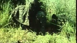 Guerra do Ultramar - Guiné - 11Nov1969