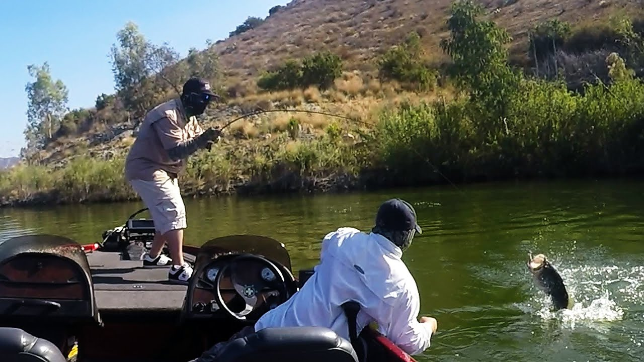 Lake hodges 8lb 11oz on a frog quick clip july 16 2016 for Lake hodges fishing