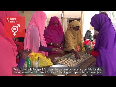 Stabilization of Livelihoods through Creation of Youth Employment - East Sudan