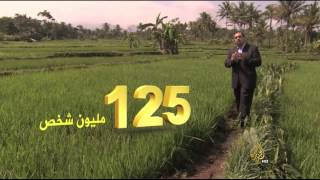أرقام- حلقة
