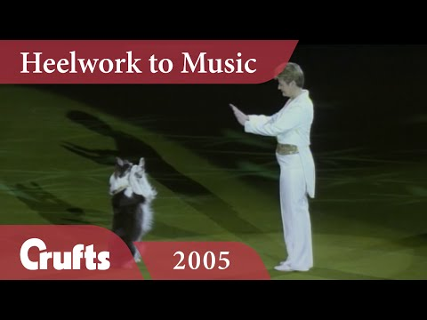Heelwork To Music - Mary Ray's 2005 Performance | Crufts Dog Show