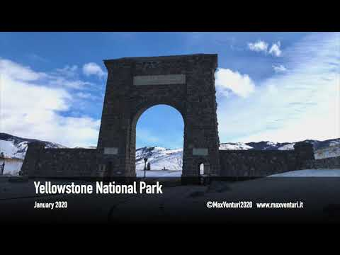 Yellowstone National Park - Winter Wildlife Photo (Jan-20)
