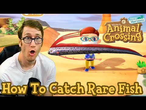 How To Catch Rare Fish In Animal Crossing: New Horizons