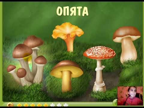 Изучаем грибы (обучающий ролик для детей) - YouTube