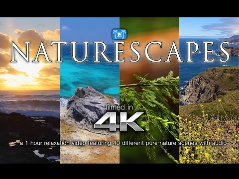 40 NATURESCAPES IN 4K | 1 HR Nature Relaxation™ Video