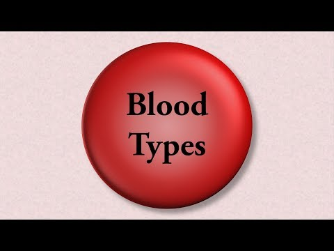 Blood Types - An Introduction To The ABO And Rh Systems
