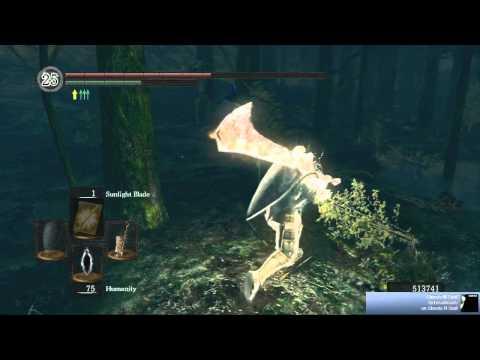 Dark Souls - Best Ganker NA