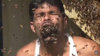 Man shoves a handful of bees into his mouth