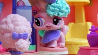 LPS: What's Up Right Now? (50,000 Subscribers Special)