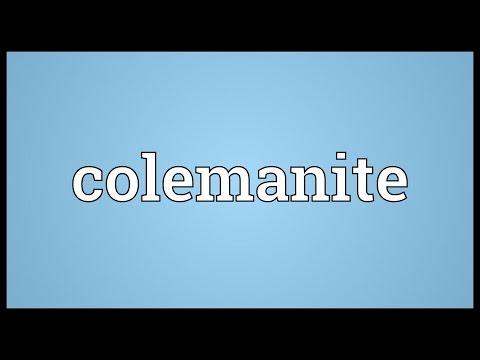 Header of colemanite