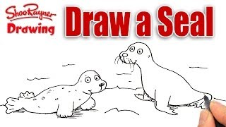 How to draw a Seal and a Sea Lion
