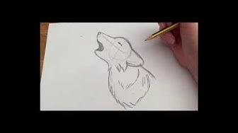 Wolf zeichnen / Drawing a wolf
