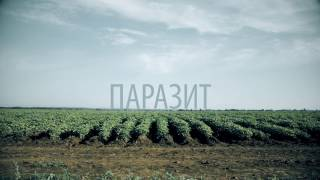 """Короткометражный фильм """"ПАРАЗИТ"""" / Short film """"Beetle"""""""