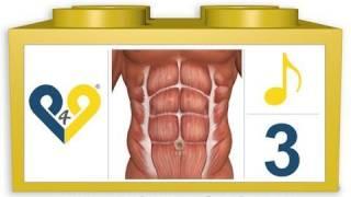 8 min Bauchmuskeltraining - Niveau 3 (P4P Music)