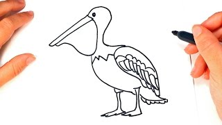 How to draw a Pelican for Kids | Pelican Easy Draw Tutorial