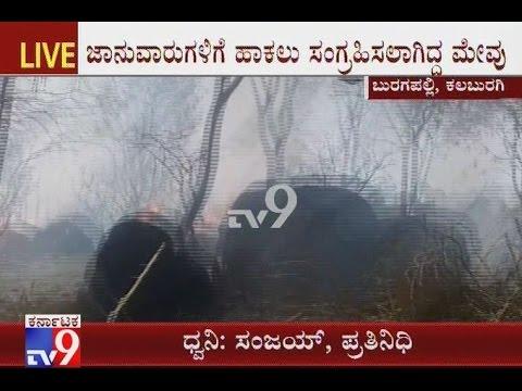20 Cattle Stack Catches Fire Accidentally, Burugapalli, Kalburgi