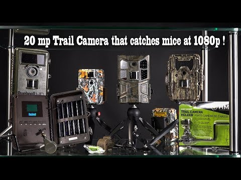 victure-hc600-trail-or-game-camera-20-megapixel-stills-1080-p-video-review