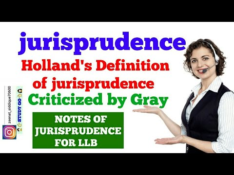 DEFINITION OF JURISPRUDENCE IN HINDI | HOLLAND'S DEFINITION OF JURISPRUDENCE | Criticism By Gray