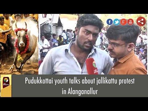 Pudukkottai youth talks about jallikattu protest in Alanganallur