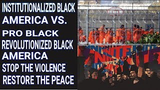 INSTITUTIONALIZED BLACK AMERICA VS PRO BLACK REVOLUTIONIZED BLACK AMERICA. STOP THE VIOLENCE.