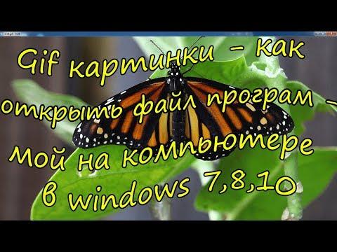 Gif картинки - как открыть файл программой на компьютере в Windows