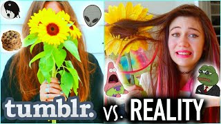 Tumblr Vs. Reality - Expectations Vs. Reality