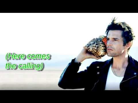 The Killers - The Calling (Lyrics)