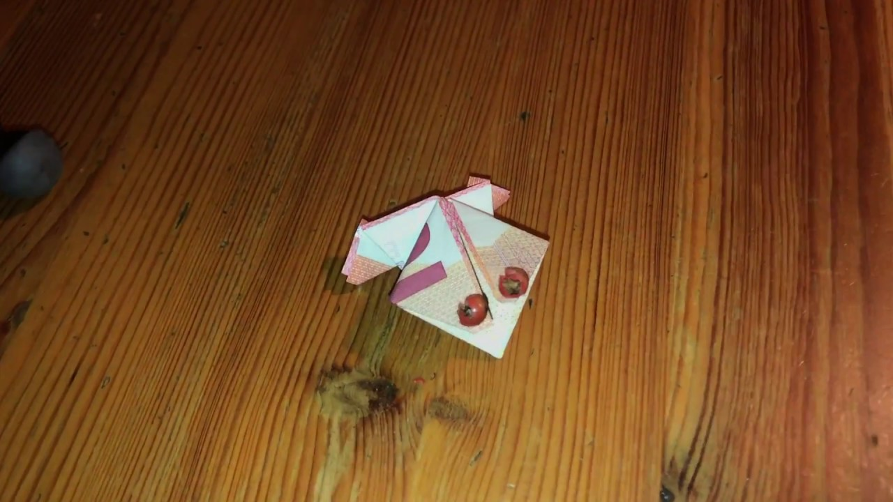 Super Geldgeschenk falten Frosch aus Geld falten Origami Anleitung how BS97