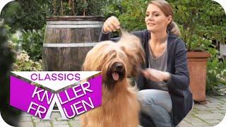 Hundepflege mit Martina