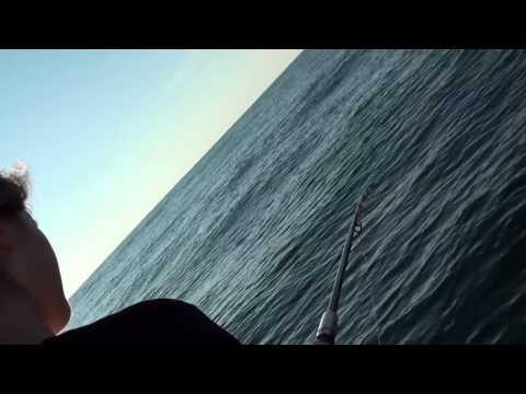 инерционная катушка для морской рыбалки