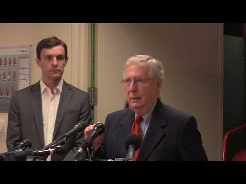 Sen. Mitch McConnell on Senate proposed tax reform