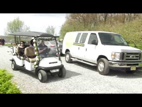 Custom Golf Cart Van on gem food truck cart, delivery cart, van pool, pushing grocery cart, crazy cart, street cart,