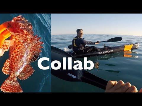 Catch N Cook Scorpion Fish Urban Fishing Australia Collaboration Ft RoKKit Kit Kayak Fishing EP.371