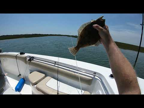June 9th - 13th 2020 Wachapreague, Virginia Flounder Fishing