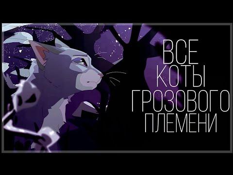 Коты воители мультфильм персонажи