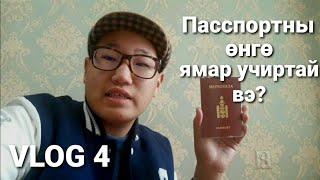 Гадаад пасспортны өнгө ямар учиртай вэ?