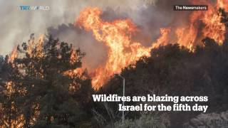 Picture This: Wildfires in Israel